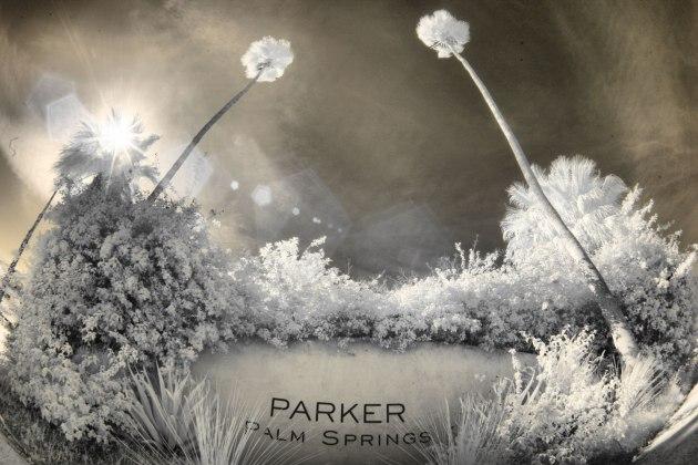 parker-palm-springs-wedding-venue-photos-by-nicole-caldwell083