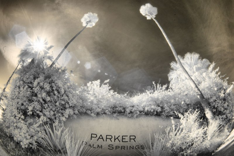 parker-palm-springs-wedding-venue-photos-by-nicole-caldwell083