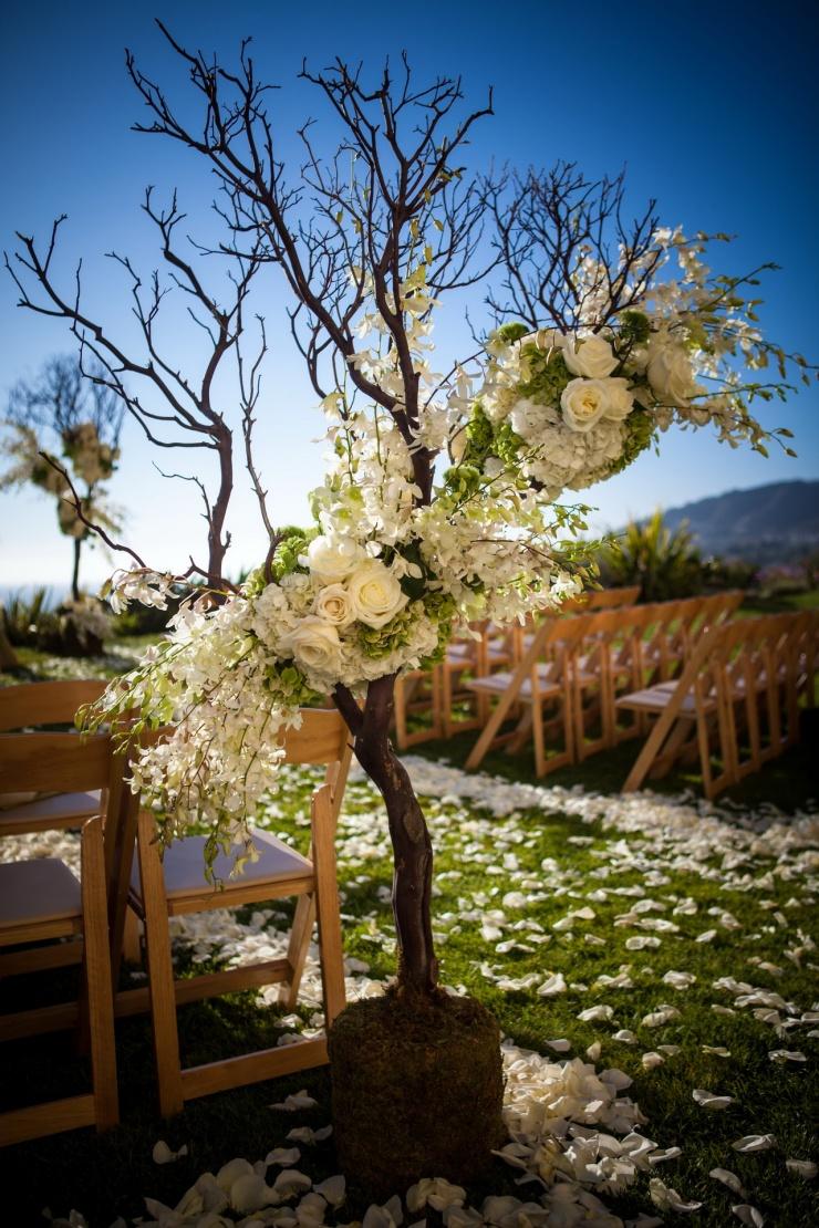 ritz_carlton_weddings_laguna_photographers_nicolecaldwell_max_blak0009