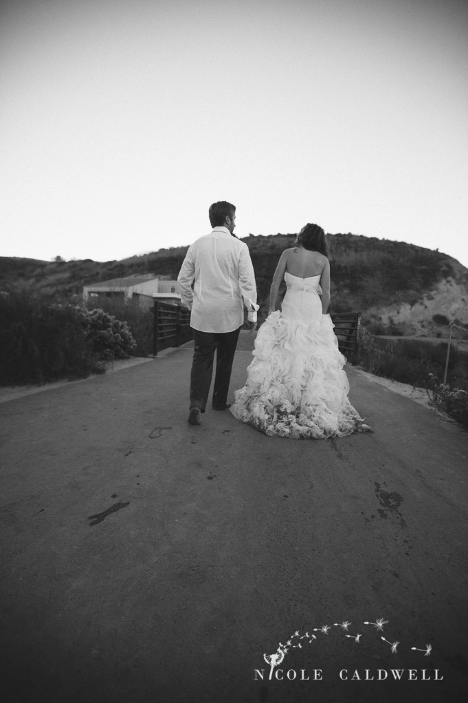 trash_the_dress_laguna_beach_wedding_photo_by_nicole_caldwell10