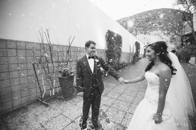 laguna beach wedding seven degrees photo by Nicole Caldwell 1207