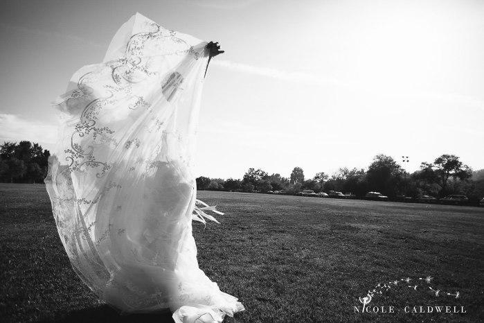blenheim-farms-pepper-tree-estate-wedding-nicole-caldwell-photo-35