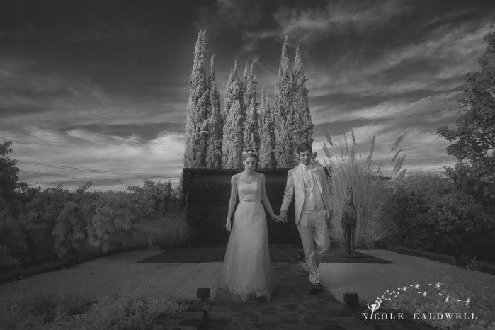 blenheim-farms-pepper-tree-estate-wedding-nicole-caldwell-photo-41