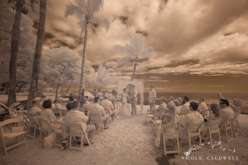 weddings on maui olowalu plantation house nicole caldwell photo 10