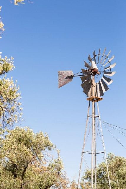 santa-margarita-ranch-wedding-barn-nicole-caldwell-photography030