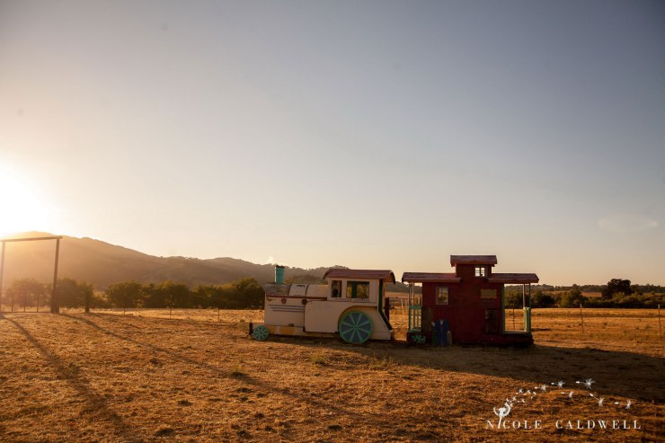 santa-margarita-ranch-wedding-barn-nicole-caldwell-photography070