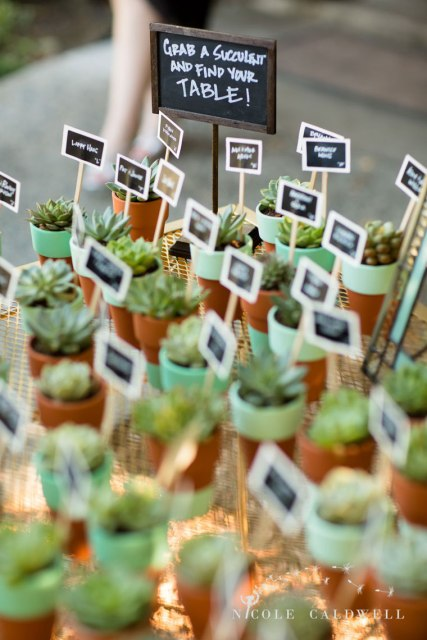 succulent favors temecula creek inn wedding stone house bride