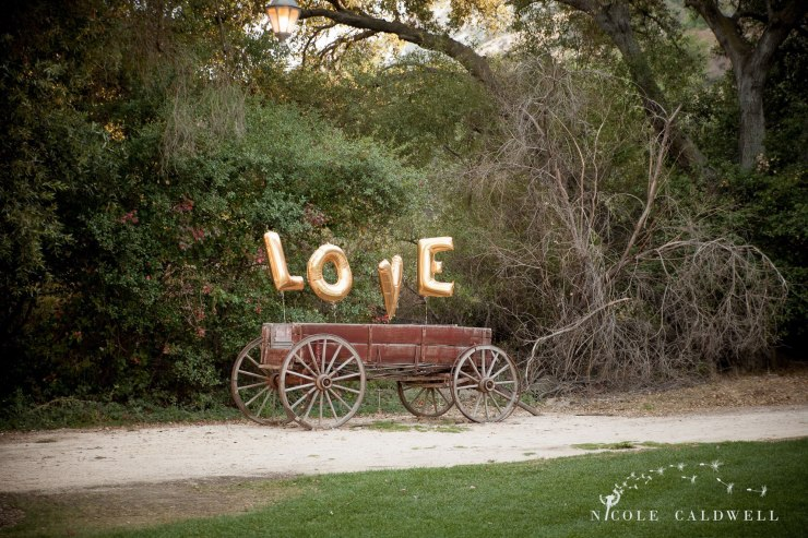 temecula wedding photographer love sign