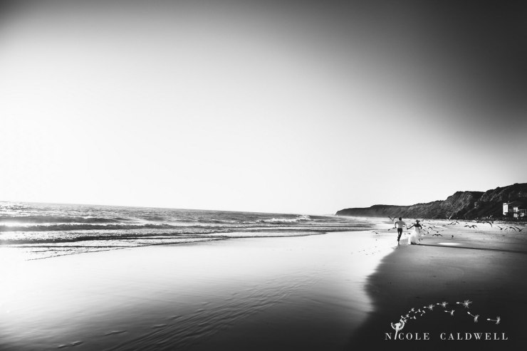 trash-the-dress-laguna-beach-wedding-19