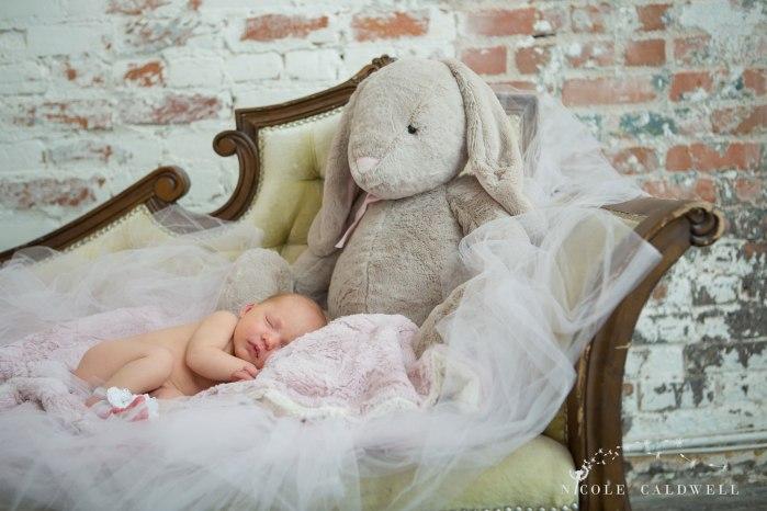 oarnge-county-photo-studio-newborn-photographer002