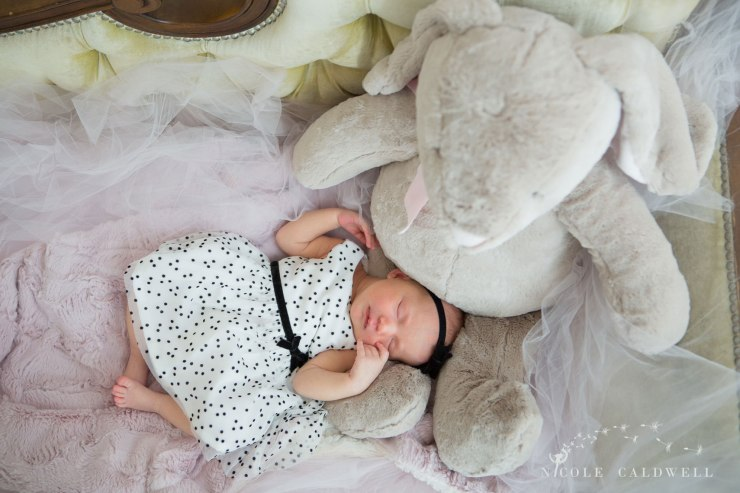 oarnge-county-photo-studio-newborn-photographer009