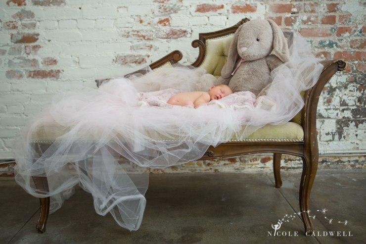 oarnge-county-photo-studio-newborn-photographer011