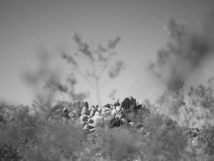 deadman's-point-california-pentax-645z-nicole-caldwell-01