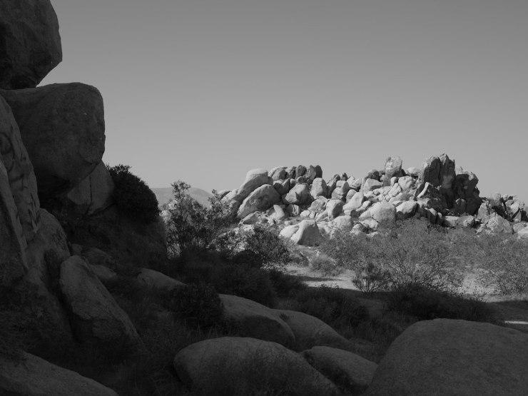 deadman's-point-california-pentax-645z-nicole-caldwell-02