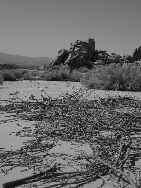 deadman's-point-california-pentax-645z-nicole-caldwell-11