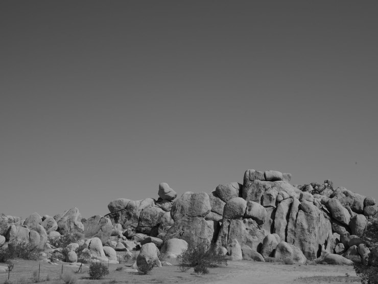 deadman's-point-california-pentax-645z-nicole-caldwell-13