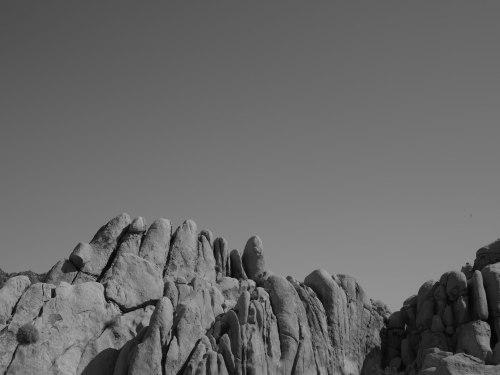 deadman's-point-california-pentax-645z-nicole-caldwell-15