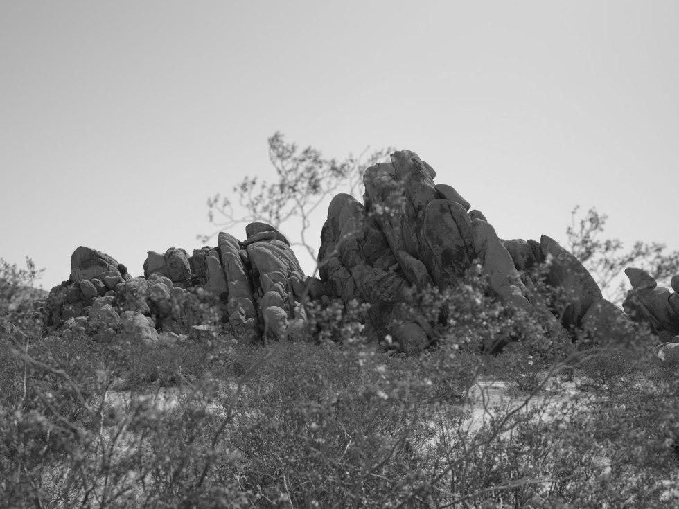 deadman's-point-california-pentax-645z-nicole-caldwell-22