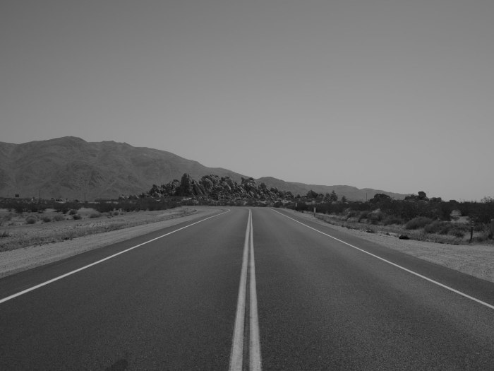 deadman's-point-california-pentax-645z-nicole-caldwell-23