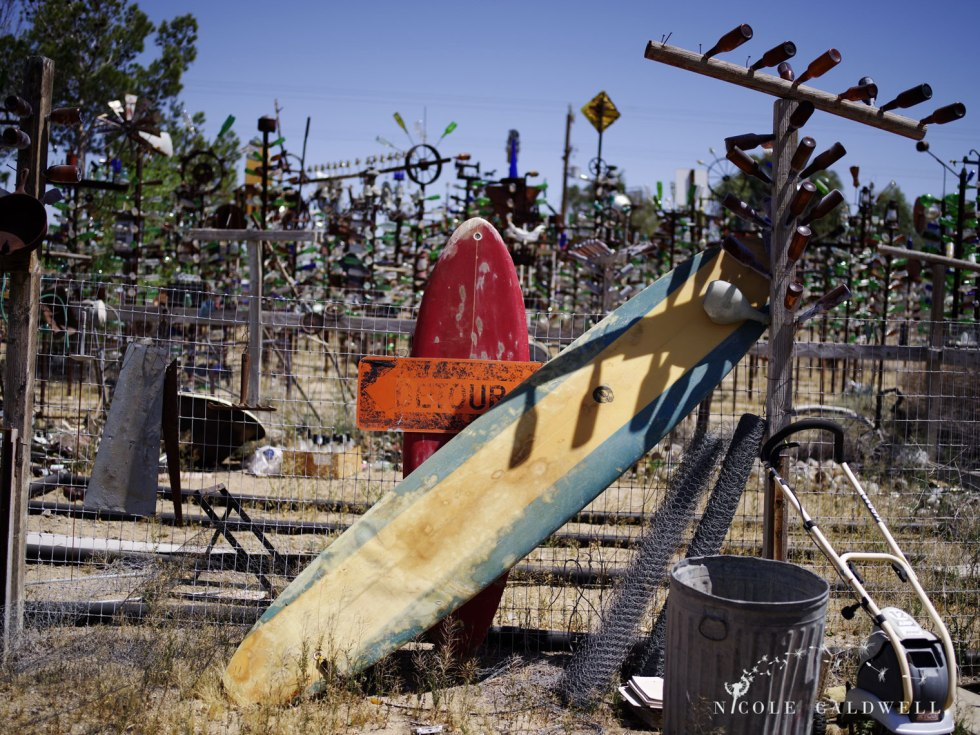 pentax-645z-at-Elmers-Bottle-Tree-Ranch-route-66-15