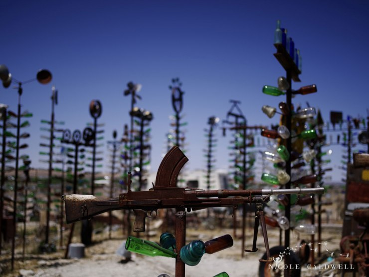 pentax-645z-at-Elmers-Bottle-Tree-Ranch-route-66-22