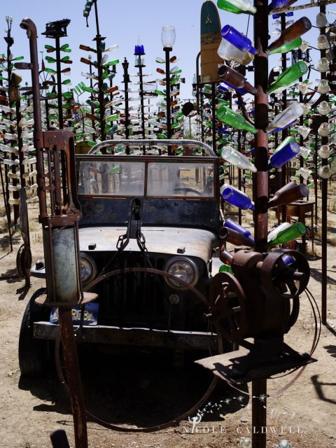 pentax-645z-at-Elmers-Bottle-Tree-Ranch-route-66-28