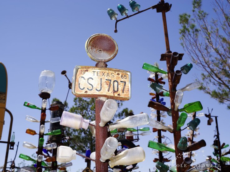 pentax-645z-at-Elmers-Bottle-Tree-Ranch-route-66-35