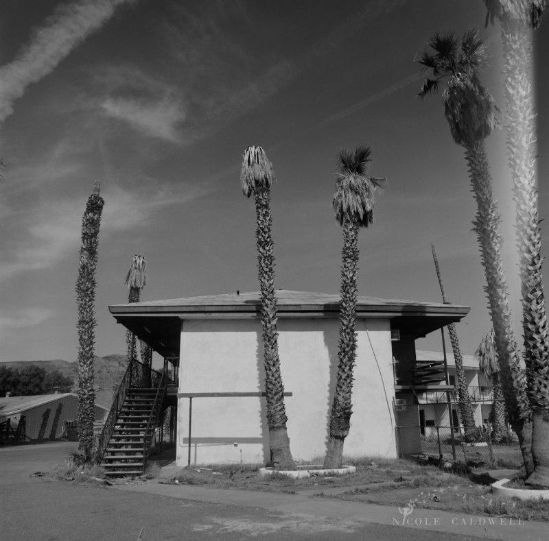 royal-hawaiian-motel-baker-california-06