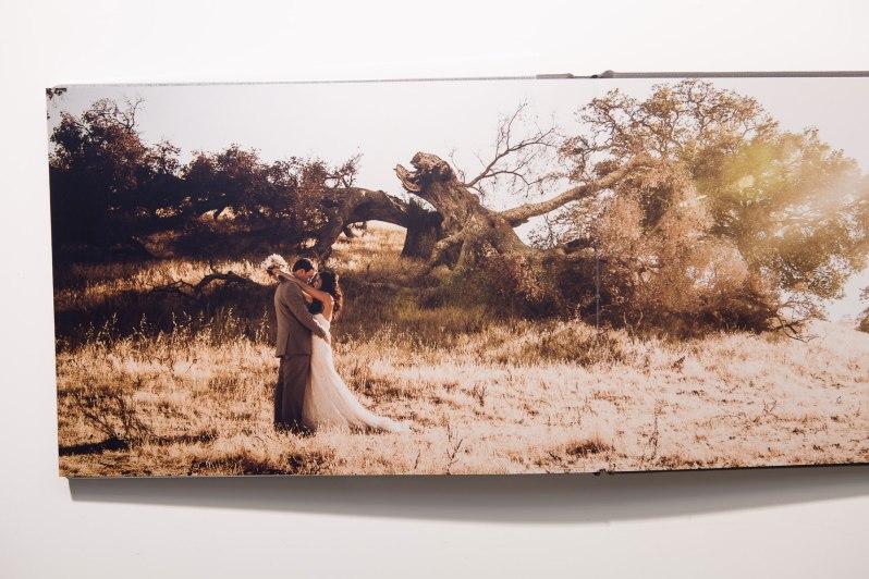 wedding_albums_niucole_calwell_weddings__nicole-Caldwell_476