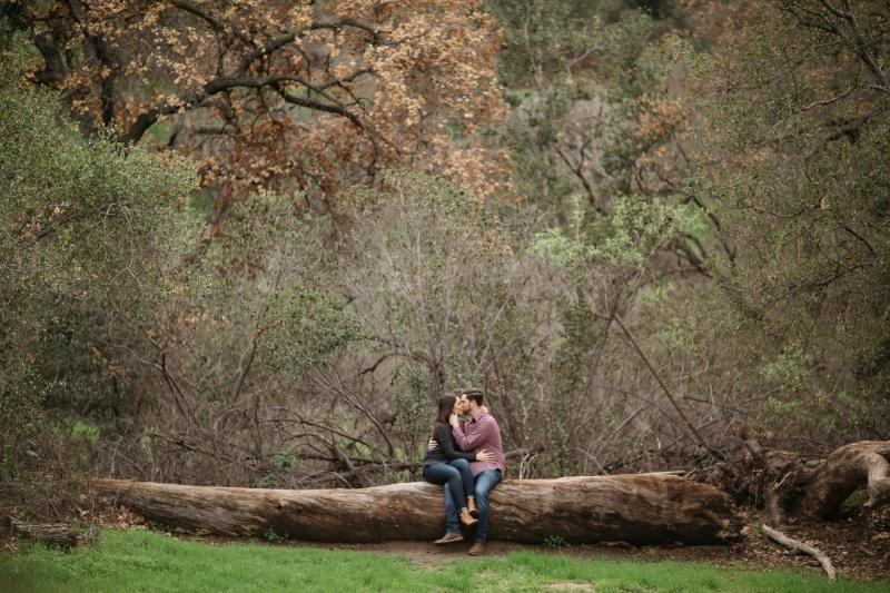 orange county engagement photographer park couple on tree